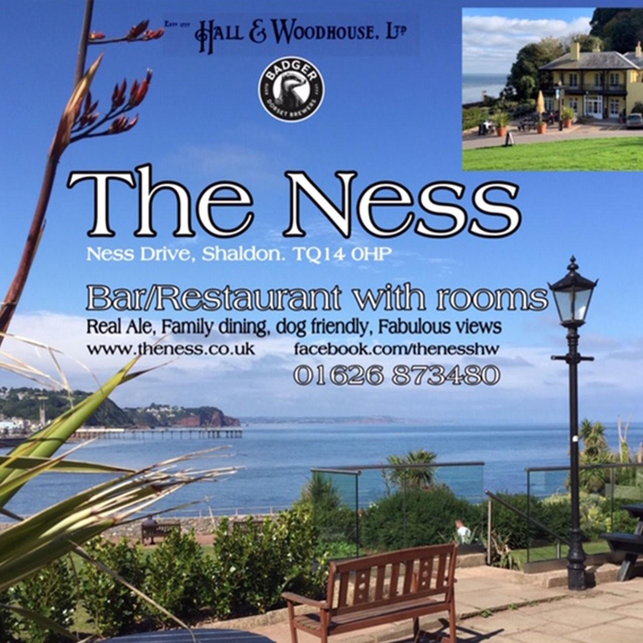 Ness Hotel Advert
