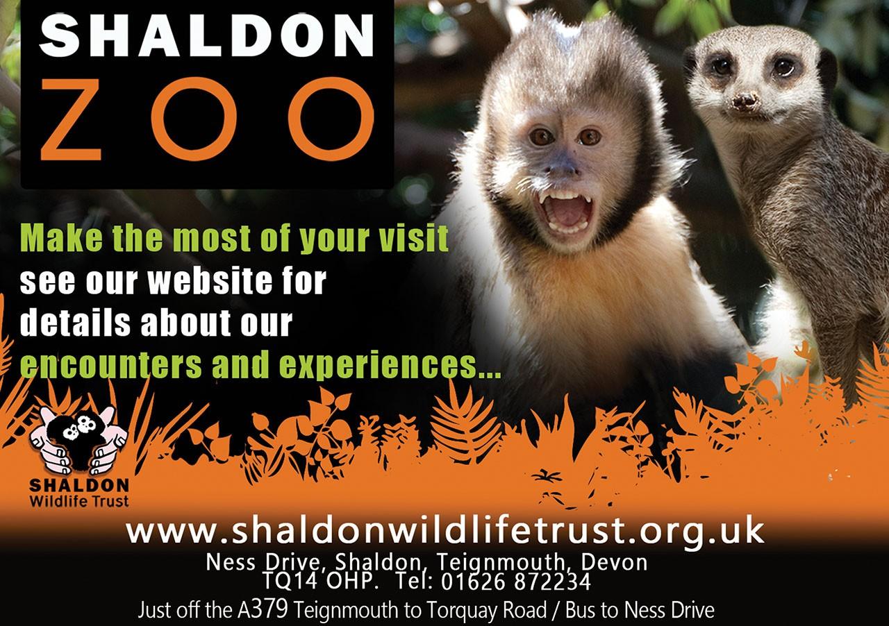 Shaldon Zoo Advert - 212mm x 150mm